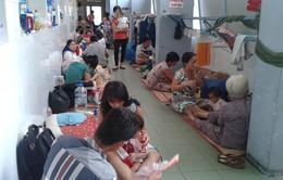 WHO khuyến nghị Việt Nam nên công bố dịch sởi