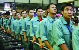 Tạm dừng đưa lao động qua 29 công ty môi giới Đài Loan