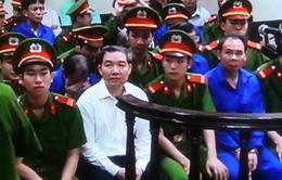 Xử phúc thẩm vụ Dương Chí Dũng: 16 luật sư tham gia bào chữa cho 9 bị cáo