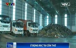 Hàng trăm tấn rác ứ đọng tại TP Cần Thơ