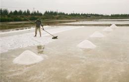TP.HCM xin được xây kho dự trữ muối quốc gia