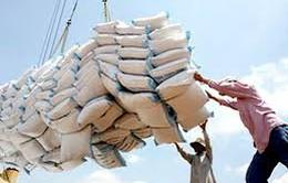 Xuất khẩu gạo giảm cả về lượng và giá trị
