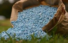 Giá nhập khẩu phân bón giảm, nông dân vẫn mua giá cao