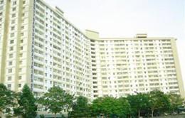 Hỗ trợ hộ dân xây nhà cho người thu nhập thấp thuê