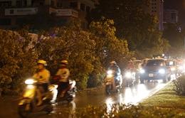 Mưa giông quật đổ nhiều cây xanh tại Hà Nội