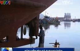 Bảo hiểm tàu cá cho ngư dân - khoảng trống cần lấp đầy