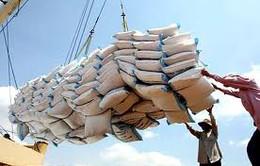 Xuất khẩu gạo sang Trung Quốc vẫn bình thường