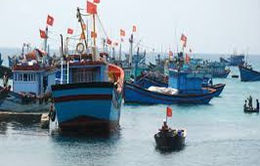 Vì sao ngư dân chưa mua bảo hiểm tàu cá?