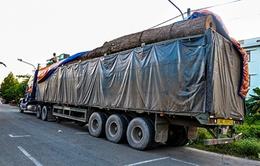 Không làm thủ tục thông quan với xe ô tô chở hàng quá tải