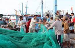 Hỗ trợ mua bảo hiểm thân thể cho ngư dân