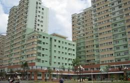 TP.HCM tháo gỡ vướng mắc trong cấp giấy chứng nhận nhà và đất