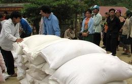 Hỗ trợ 1.158 tấn gạo cho tỉnh Sơn La