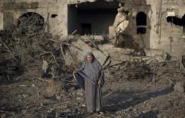 Tổng thống Palestine đề xuất đàm phán với Israel