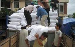 Hỗ trợ gạo cho đồng bào thuộc huyện Ba Tơ, tỉnh Quảng Ngãi