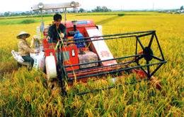 Hỗ trợ 100% lãi suất vay giảm tổn thất nông nghiệp