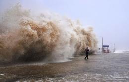 Việt Nam sắp phải đối phó nhiều cơn bão dị thường