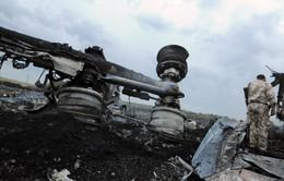 Quân đội và lực lượng đòi liên bang hóa Ukraine cáo buộc nhau vụ máy bay MH17 rơi
