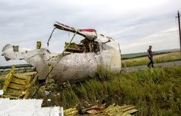 """Choáng váng khung cảnh """"nghĩa địa MH17"""""""