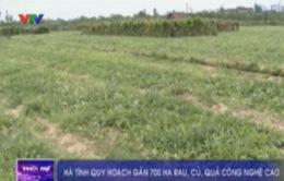 Hà Tĩnh quy hoạch gần 700 ha rau, củ, quả công nghệ cao