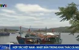 Ngư dân Bình Định tập trung đón tàu cá Việt - Nhật cập bến