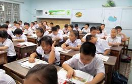 Đà Nẵng: Giải quyết triệt để tình trạng tuyển sinh trái tuyến