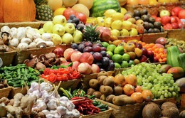 """Ba Lan """"đau đầu"""" trước lệnh cấm nhập khẩu rau quả của Nga"""