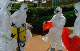 Các nước châu Phi đẩy mạnh biện pháp phòng ngừa dịch Ebola