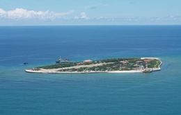 Nửa tình yêu của đảo