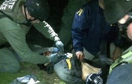 Kẻ đánh bom Boston muốn chôn vùi bí mật