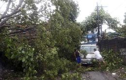Philippines như bãi chiến trường sau siêu bão Haiyan