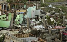 Tacloban, Philippines thành bình địa sau siêu bão Haiyan