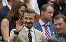 """Becks bảnh bao, nhiệt tình tham gia """"sóng người"""" trên khán đài Wimbledon"""