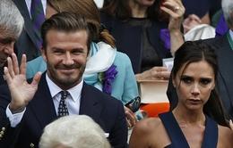 "Sao ""bự"" Hollywood dự khán trận chung kết Wumbledon 2014"