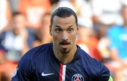 """Ibrahimovic – kẻ chinh phạt danh hiệu sẵn sàng """"cháy"""" hết mình vì PSG"""
