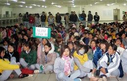 Hàng nghìn công nhân Sanyo OPT Việt Nam mất việc