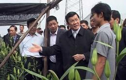 Chủ tịch nước: Nông dân là nhân tố quyết định XD nông thôn mới