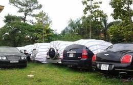 """Nhiều ô tô trốn thuế theo diện """"Việt Kiều hồi hương"""""""