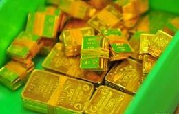 NHNN tiếp tục đấu thầu 26.000 lượng vàng