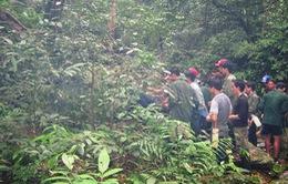 Bắt nghi phạm thứ ba trong vụ thảm sát 5 thợ rừng