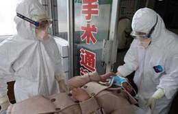 WHO: Chủng cúm H7N9 gây tử vong cao