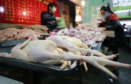 Lo sợ dịch cúm, người Trung Quốc tẩy chay thịt gà