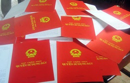 """Đại biểu Quốc hội TP.HCM nghe báo cáo về vụ """"trả sổ đỏ"""""""