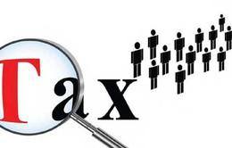 Đánh thuế cao cá nhân kinh doanh không đủ chứng từ