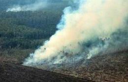Indonesia: Dập tắt cháy rừng bằng mưa nhân tạo