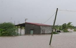Khả năng bão số 5 vào nước ta rất cao