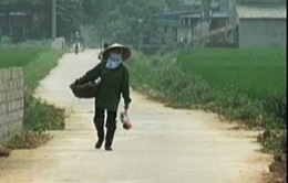 Kết luận sai phạm xây đường liên thôn tại Thái Nguyên