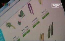 """Sốt"" dịch vụ rau quả online ở Indonesia"