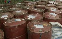 Thanh Hóa: DN chôn thuốc trừ sâu xuống đất