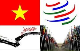 WTO đánh giá cao sự thay đổi chính sách của việt Nam