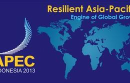Đóng góp của Việt Nam trong APEC